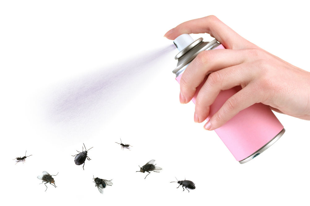 Best-Bug-Killer-Spray-Review